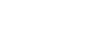 New zealand government procurement